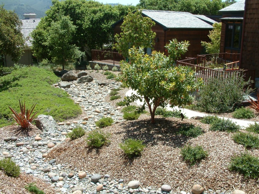 Gallery Z Dry Creek Beds