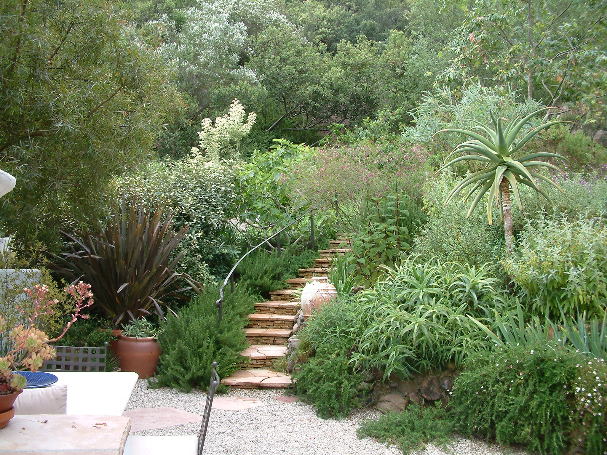 garden of the week fifty 1 designed by stephanie blanc