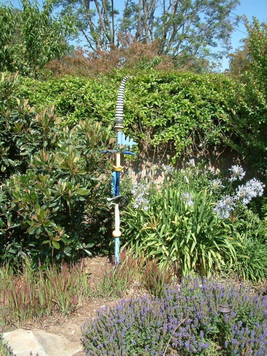 Gardens featuring distictis buccinatoria for Garden design quiz