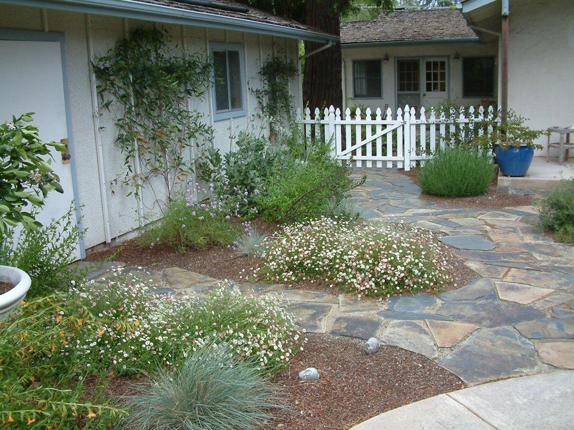 Gardens featuring lavandula angustifolia 39 lavender lady 39 for Garden design quiz